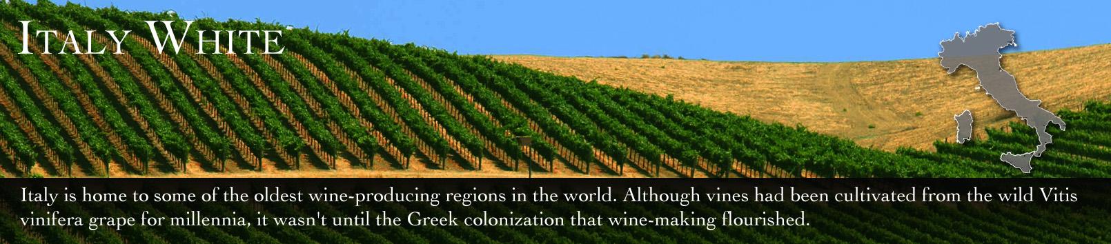 italy white wine